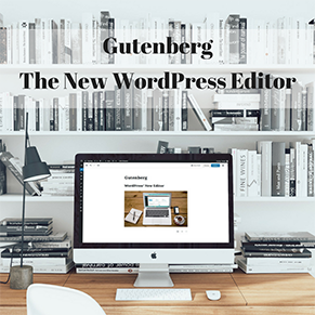 WordPress Gutenberg PLR